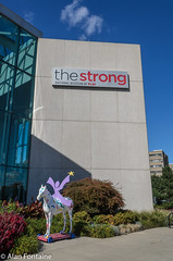 Strong Museum of Play (Al Fontaine) Tags: museum strong play rochester ny fun children girls boys