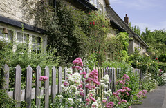 Edith Weston Cottages (Adam Swaine) Tags: rutland countyofrutland rural ruralvillages cottage cottages villagecottage englishcottage england english englishvillages britain british uk ukcounties ukvillages counties canon beautiful