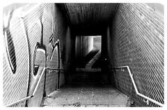 Downstairs (GMM V) Tags: eutschland nrw ruhrgebiet gelsenkirchen strasenbahn street sw leicax2 architektur
