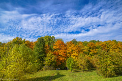 October in Tsaritsyno Park / Октябрь в Царицыно (Vladimir Zhdanov) Tags: autumn october nature landscape russia moscow park forest tree sky cloud tsaritsyno grass field wood