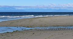 Looking Eastward (21mickrange) Tags: bluebackbeach nanaimo hammondbay salishsea winchelsea nanoosebay pacificocean beach trees douglasfir vancouverisland britishcolumbia