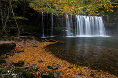 Sgwd Ddwli Uchaf (geraintparry) Tags: nikond500 d500 nikon sigma 1750 sigma1750 south wales waterfall waterfalls landscape water outdoor falls long exposure river brecon nature naturephotography beacons national park geraint parry geraintparry sgwd ddwli uchaf autumn