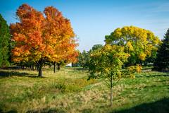 Sheboygan Fall Colors-10