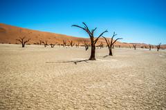 Deadvlei (julienreininger) Tags: sossusvlei namibie deadvlei lake desert