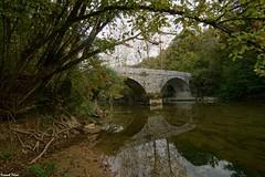 Vieux pont au dessus du Lison (francky25) Tags: vieux pont au dessus du lison franchecomté doubs rivière pierre automne