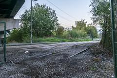 Eagle Lane crossing (d0mokun) Tags: blackcountry railway southstaffsline abandoned autumn levelcrossing sunset urbandecay urbanexploration urbanlandscape urbex westmidlands tipton england unitedkingdom gb