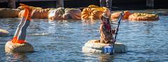 _MC_2835 (matxutca (cindy)) Tags: pumpkin regatta daybreak southjordan utah race lake fall costumes halloween crowds event outdoors neighborhood community