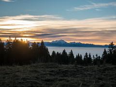 Sunrise (Lanceflot) Tags: mountain landscape mont blanc snow sky sunset sunrise tree nature wild hiking tramping walk