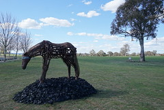 #01 Blind Suzie Bleach Andrew Townsend (spelio) Tags: actsep2018shawyassvalleynsw canberra australia sep 2018 rural art sculpture murrumbateman horse coal global warming