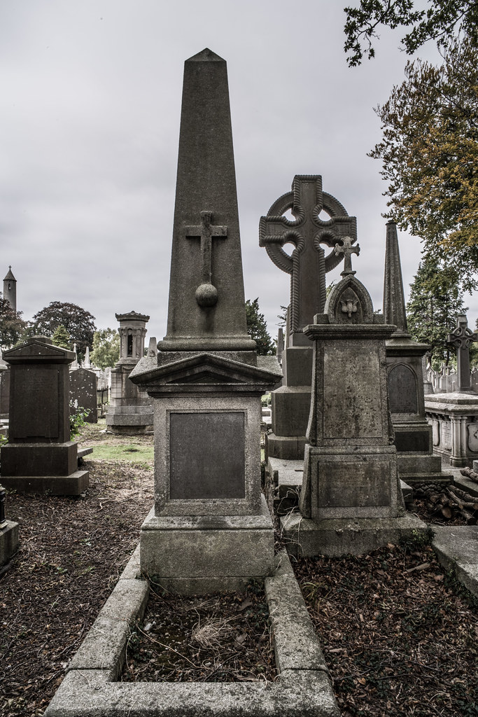 SEPTEMBER 2018 VISIT TO GLASNEVIN CEMETERY [ I USED A BATIS 25mm LENS AND I EXPERIMENTED WITH CAPTURE ONE]-144833