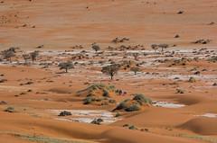 Désert du Namib ( Philippe L PhotoGraphy ) Tags: afrique namibie afric namibia désert etosha fauve dunesoiseaux rapace philippelphotography