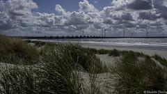 je suis passé par la Zélande (Zeeland) (musette thierry) Tags: zeeland zélande paysbas nederland holande europe musette thierry d800 nikon nikkor paysage panorama