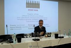 Ais Verona -Vecchio e Nuovo Mondo-105 (Associazione Italiana Sommeliers - Verona) Tags: aisverona aisveneto nuovo mondo igor marini