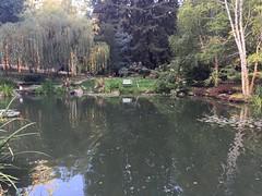 Pond (HockeyholicAZ) Tags: nestldown venue wedding party losgatos northerncalifornia bayarea sanjose