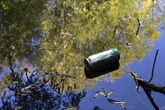 Man vs Nature 3/6 (Harry Goddard) Tags: photography nikon d3200 1855mm can floating reflection tin bottle metal trees nature manmade human made twigs green blue people man