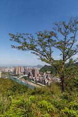 What a View (Dooquie) Tags: xindiandistrict newtaipeicity taiwan tw taipei taipeitaiwan outdoor hiking hike outside adventure fun xindian hemeimountain hemeihikingtrails