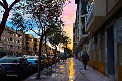 My Own Sunset Street (Anavicor) Tags: linares jaén calle avenida andalucía españa spain spanien espagne sunset puestadesol crepúsculo nikon tamron d5300 anavicor anavillar villarcorreroana correro coche árbol