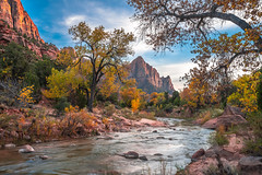 Zion Watchman Virgin River Peak Fall Colors Bridge View Sunset! Zion National Park Fall Foliage Utah Autumn Colors Fine Art Landscape & Nature Photography! Sony A7R III & Sony FE 16-35mm f/2.8 GM G Master Lens! Sharp High Res Photography! A7R3 McGucken (45SURF Hero's Odyssey Mythology Landscapes & Godde) Tags: peak fall colors a7r 3 zion east side washes hiking national park foliage utah autumn fine art landscape nature photography sony iii fe 1635mm f28 gm g master lens sharp high res a7r3 elliot mcgucken maples cottonwoods the a7riii rocks