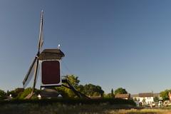 Windmills of the World: Asten, The Netherlands (CoasterMadMatt) Tags: asten2018 asten deoostenwind oostenwind windmolen windmill windmolens nederlandsewindmolens dutchwindmills windmillsoftheworld erfgoed heritage geschiedenis history stad town noordbrabant northbrabant north brabant nederland netherlands holland june2018 summer2018 june summer 2018 coastermadmattphotography coastermadmatt photos photographs photography nikond3200