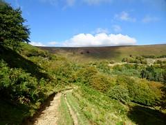 Mynydd Maen & Blaen Bran, Upper Cwmbran 28 September 2018 (Cold War Warrior) Tags: mountain blaenbran cwmbran