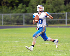 Palmer Ware Game (Peter Camyre) Tags: palmer ware high school varsity football massachusetts peter camyre sports photography team players action ball field colors green blue white