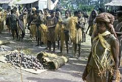 Album1-49-025b (Stichting Papua Erfgoed) Tags: mimika kamoro karapao stichtingpapuaerfgoed
