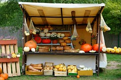 Stand with pumpkins (Yirka51) Tags: agriculture appetite autumn basket colored diet farming flora food fruit garden grass market nature sand street vegetables twist stalk withe pumpkin squash crop yield knitting knit bush fence stand kiosk exhibition exposition shop show