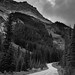 Along Yoho Valley Road (Black & White, Yoho National Park)