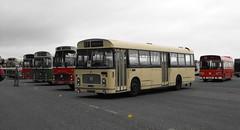 Bristol RE's @ Showbus 2018 (3) (Andy Reeve-Smith) Tags: bristol re ecw ecwbody coach dualpurpose showbus 2018 showbus2018 doningtonpark donington castledonington derbyshire derbys leicestershire leics