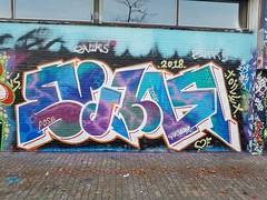 20181014_171843 (Paul Optenkamp) Tags: paulnaadloos schuttersveld collection wall mural graffiti paint rotterdam crooswijk