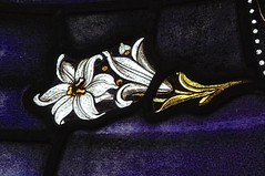 Wells-next-the-sea - St Nicholas' Church (Glass Angel) Tags: wellsnextthesea church stnicholas stainedglasswindows stainedglass