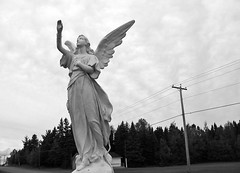 Hail Mary... (Robert Saucier) Tags: acadie nouveaubrunswick statue ciel sky nuages clouds arbres trees fils wires poteau pole ange angel ailes wings noiretblanc blackwhite img0187