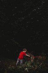 OwenNickerson.jpg (alygraphs) Tags: adventure berries boy child dark detail dim discover documentary explore find green hand lifestyle lowlight male minimalism moody negativespace outside pick playing red toddler tree