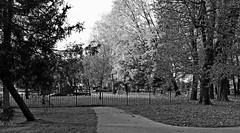 DSCF1443a_jnowak64 (jnowak64) Tags: poland polska malopolska cracow krakow krakoff park parkjordana jesień mik bwextra