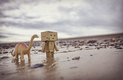 Jurassic Coast. (Matt_Briston) Tags: dinosaur robot danbo sand beach cley pebbles reflection walk fuji x70 fake flickrfriday
