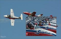 page02 (Mephisto3) Tags: rcaf snowbirds 431sqdn aerogatineau2018 gatineau acrobatic cynd airshow demo avgeek