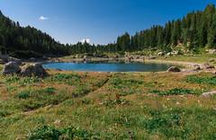 Triglav Lakes Valley (happy.apple) Tags: ukanc radovljica slovenia si triglavlakesvalley dolinatriglavskihjezer dvojnojezero doublelake summer wildflowers julianalps julijskealpe slovenija alps lake