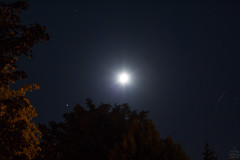 Moon & Mars / @ 55 mm / 2018-09-19 (astrofreak81) Tags: mars mond luna moon planet stars tree light night sky dark konjunktion konstellation dresden 20180919 atrofreak81 sylviomüller sylvio müller