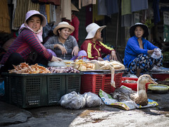 Da Nang 07 (arsamie) Tags: danang vietnam asia market street urban women hats family portrait goose meat smiles life people cho an happiness joy