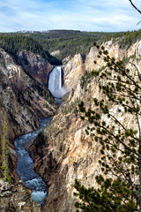 Grand Canyon of the Yellowstone and Lower Falls (sibnet2000) Tags: yellowstonenationalpark yellowstone grandcanyonoftheyellowstone lowerfalls yellowstoneriver