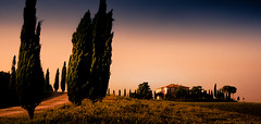 Cypress Hill (Beppe Rijs) Tags: 2018 italien juli sommer toskana italy july summer tuscany
