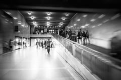 Grand Central Station (Maria Eklind) Tags: grandcentral trainstation usa newyork building us architecture bw blackandwhite station grandcentralstation