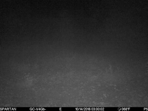 2018-10-14 03:00:02 - Crystal Creek 1