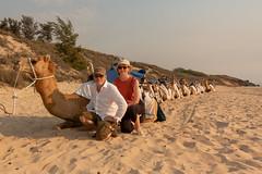 10003376.jpg (KevinAirs) Tags: camels kevinairs ocean camel travel westernaustralia ©kevinairswwwkaozcomau sand sky landscape landscapes beach australia sea jacquihawkins