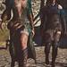 The Witcher 3: Wild Hunt / Fair Ladies