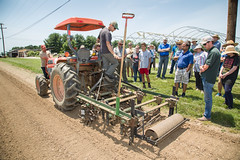 20180607acp130sp003.jpg (ukagriculture) Tags: horticulture weedcontrol cultivator weeds cultivation weed lexington kentucky