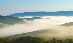 Morning Veil. (popago) Tags: windmills mountains fog appalachia westvirginia sureal corridorh autumn windpower landscape blue green