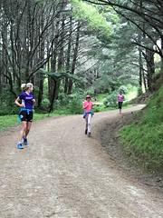 IMG_8350 (dastridc) Tags: loveparkrun porirua parkrun park sport running bothamley newzealand