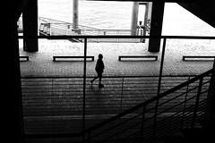In the wet passage (pascalcolin1) Tags: paris13 femme woman seine rivière river eau water humide wet ombres shadows reflets reflection photoderue streetview urbanarte noiretblanc blackandwhite photopascalcolin 50mm canon50mm canon