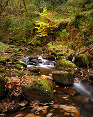 Forest river (Explored Nov 18) (another_scotsman) Tags: river forest cascade waterfall long exposure west pennines england fall autumn trees leaves